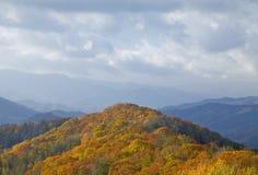 Outono, grande Mtns fumarento NP imagem de stock royalty free