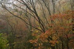 Outono, grandes montanhas fumarentos NP Foto de Stock