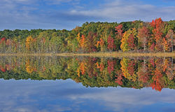 outono, Hall Lake Reflections Fotografia de Stock