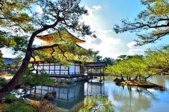 Outono japonês Imagens de Stock Royalty Free
