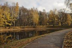 outono, lagoa Imagem de Stock Royalty Free