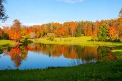 outono maduro da queda dourada no parque de Pavlovsky, Pavlovsk, St Petersburg, Rússia fotos de stock royalty free
