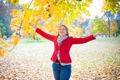 Outono maravilhoso Imagens de Stock