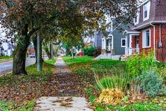 outono, meio de outubro em Novo Brunswick, Canadá foto de stock royalty free
