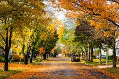 outono, meio de outubro em Novo Brunswick, Canadá imagens de stock