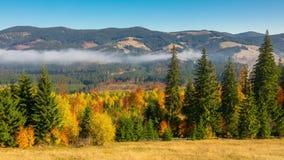 outono Misty Morning nas montanhas video estoque