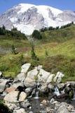 Outono Mt. mais chuvoso Fotos de Stock Royalty Free