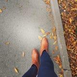 Outono na cidade Imagem de Stock Royalty Free