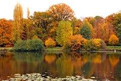 outono na floresta em França Fotografia de Stock Royalty Free