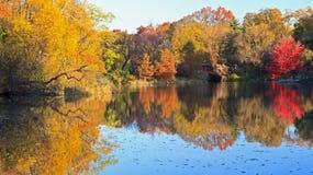 Outono na lagoa em Central Park Fotografia de Stock Royalty Free