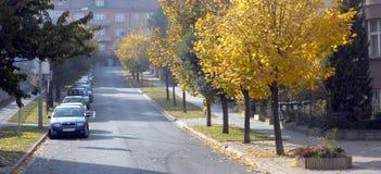 Outono na rua fotografia de stock royalty free