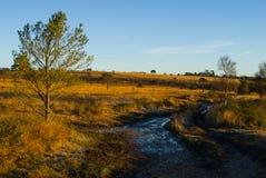 outono na terra comum de Woodbury, Devon fotografia de stock royalty free