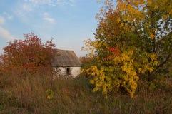 Outono na vila Imagem de Stock Royalty Free