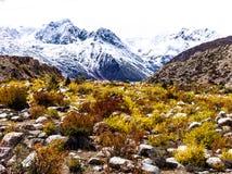outono nas montanhas, Tibet, China imagem de stock