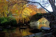 Outono no banco de Ogwen Imagem de Stock