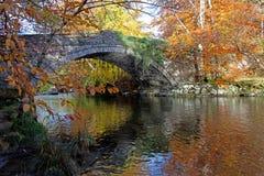 Outono no banco de Ogwen Foto de Stock Royalty Free