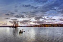 outono no corvo do Loch imagem de stock