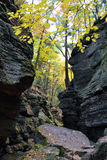 outono no desfiladeiro Imagens de Stock Royalty Free