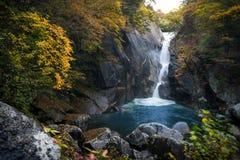 outono no desfiladeiro de Shosenkyo fotografia de stock