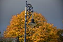 outono no dia ensolarado, parque, poste de luz, parte superior do telhado, nuvens pesadas Fotos de Stock Royalty Free