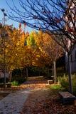 outono no espanhol Escorial Fotos de Stock