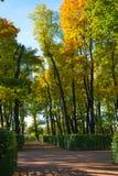 outono no jardim da cidade Foto de Stock Royalty Free