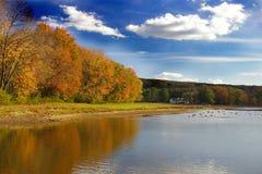 Outono no lago deer Imagens de Stock Royalty Free