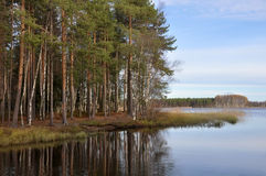 outono no lago Kuivasjärvi Fotos de Stock Royalty Free