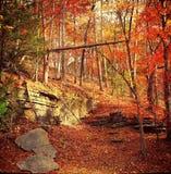 outono no Ozarks fotografia de stock