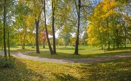 Outono no parque de Moscovo Fotografia de Stock