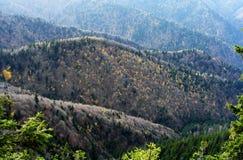 outono no parque nacional de Piatra Craiului imagens de stock