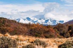 Outono no Patagonia Tierra del Fuego, lado de Argentina Fotografia de Stock