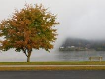 outono no rio Imagens de Stock Royalty Free