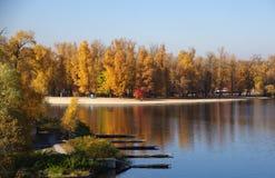 Outono no rio Fotografia de Stock Royalty Free