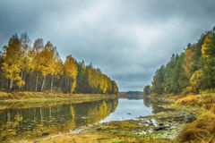 outono no rio Mologa Fotos de Stock Royalty Free
