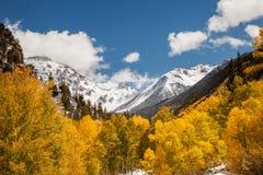 outono no San Juan Mountains de Colorado fotografia de stock royalty free
