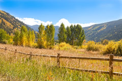 Outono no vale de Colorado fotos de stock royalty free