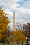 Outono no Washington DC Foto de Stock