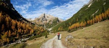 Outono nos alpes Fotos de Stock