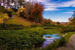 outono nos jardins botânicos elevados da montagem Foto de Stock