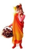 Outono novo Imagem de Stock Royalty Free