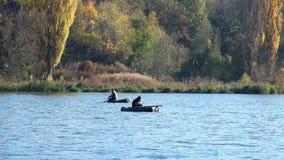 outono Os pescadores nos barcos de borracha no meio do rio estão pescando vídeos de arquivo