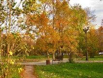 outono Parque da cidade com folha dourada Fotos de Stock