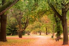 outono, parque de Luzanky, Brno - República Checa fotografia de stock royalty free