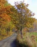 Outono polonês Fotografia de Stock Royalty Free