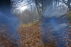 Outono que trekking Foto de Stock
