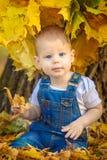 outono, queda, menina, criança, pouco, feliz, criança, natureza, parque, folhas, estação, retrato, amarelo, folha, bebê, exterior Imagem de Stock