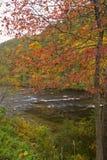 Outono, rio de Tellico, N-F Cherokee foto de stock