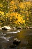 Outono, rio de Tellico, N-F Cherokee fotografia de stock royalty free