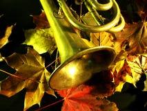 Outono still-life3 imagem de stock